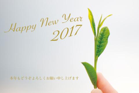 everyday年賀状2017web用1000